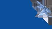 Vole-Vite Logo
